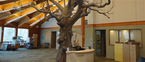 The finished tree and welcome desk